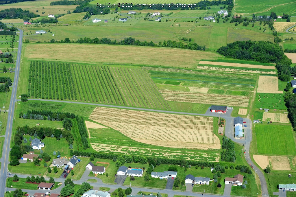 Aerial Photos Of The School Farm