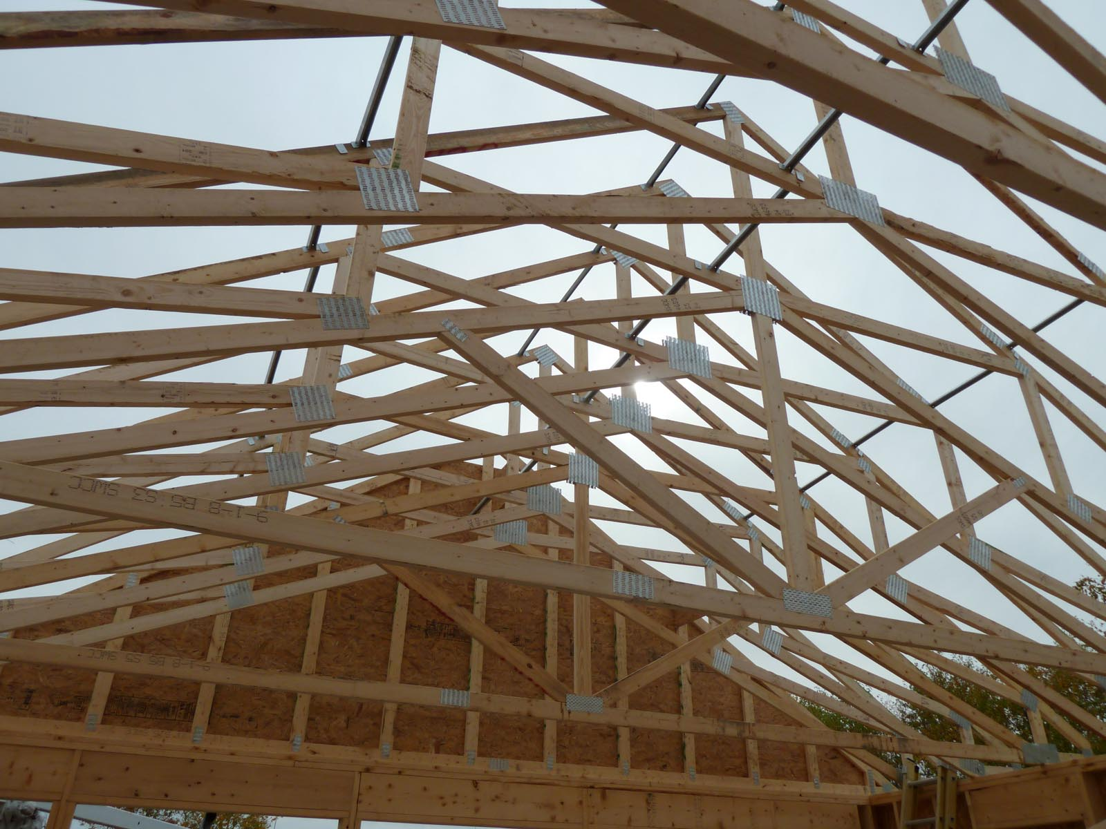 roof trusses day 1 quadomated